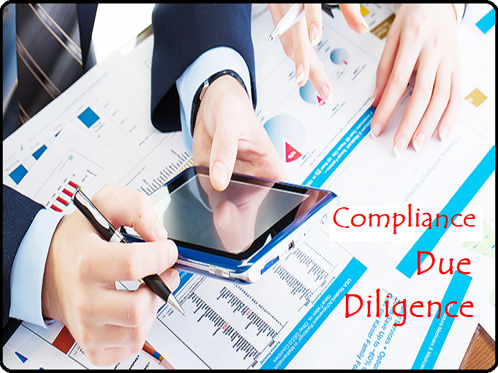 Compliance and Due Diligence Support
